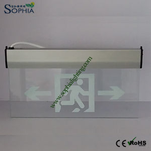 New Emergency Sign, LED Sign Lamp, LED Indicator Light pictures & photos