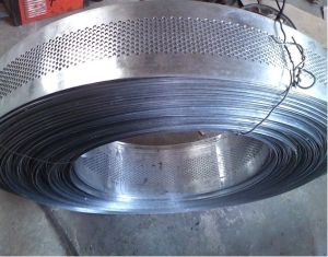 Galvanized Coil Perforated Metal Mesh pictures & photos