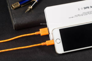 Nylon Braided Jacket Mobile Phone Cable USB 2.0 a Male to 8pin for iPhone 5/5s/5c/6 (JH-2348)