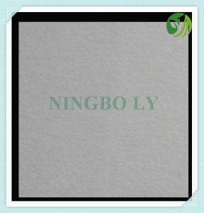 Non Woven Fusible Interlining pictures & photos
