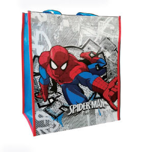 Wholesale Custom Promotional Reusable Laminated PP Non Woven Shopping Bags pictures & photos