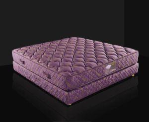 Hm156 Beautiful Foam Mattress pictures & photos