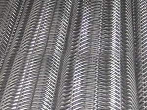 Stainless Steel Double Spiral Belt Mesh/ Stainless Steel Wir Mesh Conveyor Belt pictures & photos