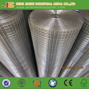 Galvanized Welded Type Welded Wire Mesh Roll Made in China pictures & photos