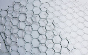 Galvanized Hot Dipped Hexagonal Wire Netting pictures & photos