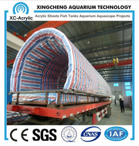 Large Clear PMMA Tunnel of Oceanarium Project pictures & photos