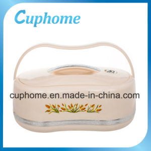 Food Grade Material Plastic Food Box Thermal Insulated Food Container