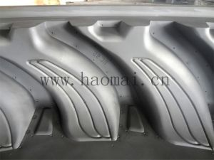 China Famous Agricultural Tire Mold pictures & photos