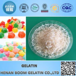 Halal Gelatin Used in Food Industry pictures & photos