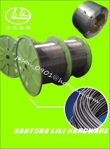 Bright Steel Wire, Anneal Steel Wire, Steel Wire pictures & photos