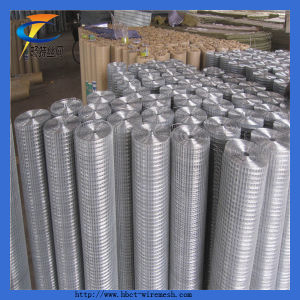 Hot Sale 2X2 Galvanized Welded Wire Mesh Roll pictures & photos