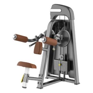 2015 Newest Fitness Equipment Lateral Raise (SD1003) pictures & photos
