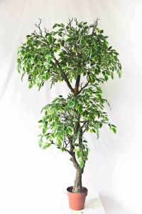 High Quality of Artificial Plants Maple Tree Gu-Mx-Maple-70cm pictures & photos