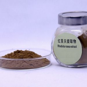 Rhodiola Rosea Extract Rhodiola Glycosides and Aglucone Tyrosol 3%