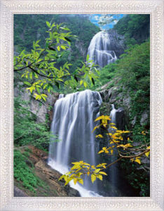 3D Picture Waterfall 3D Poster pictures & photos
