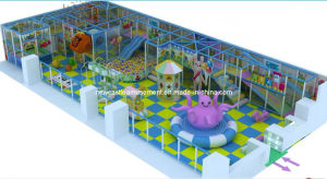 Indoor Playground (NC-IP203) pictures & photos