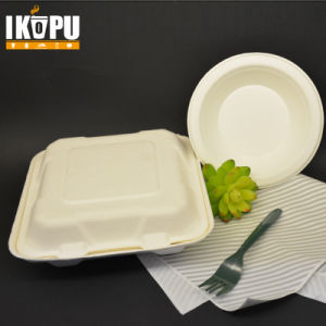 100% Biodegradable Pulp Sugarcane Bagasse Food Container Eco Friendly pictures & photos