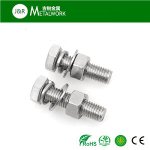 Stainless Steel SS304 SS316 SS316 Hex Bolt (DIN933) pictures & photos