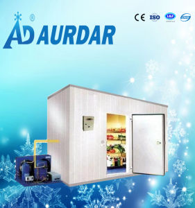 Factory Price Cold Room Sliding Door for Sale pictures & photos
