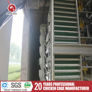 Layer Poultry Farm Equipment for Hen Chickens pictures & photos