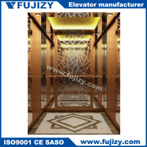 Villa Passenger Elevator with Handrail pictures & photos