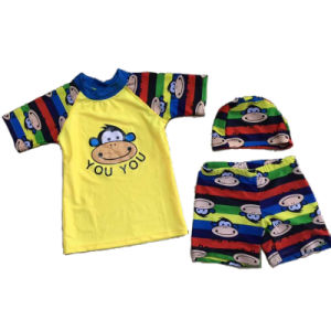 Kid′s Short Sleeve Rash Guard with T-Shirt Pants Hood (HXR0063) pictures & photos