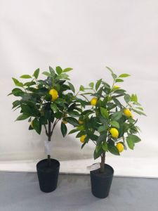 Artificial Plants and Flowers of Lemon Tree Gu51619808 pictures & photos