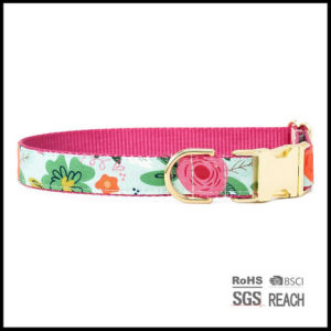 Customised Dog Cat Bowtie Collar Pet Dog Products Supply pictures & photos