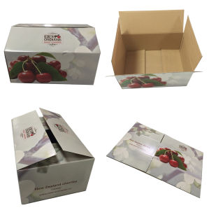 Durable Cardboard Vegetables Fruit Packaging Box pictures & photos