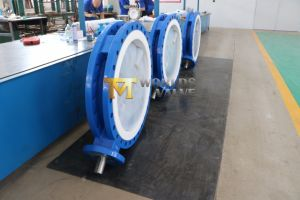 36 48 52 Inch PFA Coated Disc U Type Butterfly Valve pictures & photos