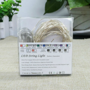 USB Operated 50 16.4FT Copper Wire Firefly Lights Warm White Amazon Hot Sell Fairy String Lights pictures & photos