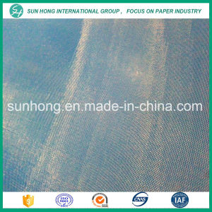 Paper Making Sludge Dewatering Fabrics pictures & photos