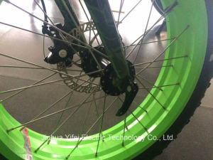 20 Inch Lithium-Ion Battery Fat Tire Electric Bike Ebike for All Terrain pictures & photos