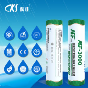 Self-Adhesive High Polymer Waterproof Membrane with Double Deck pictures & photos