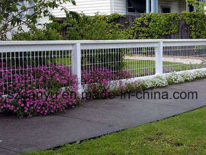 Welded Wire Mesh/ Galvanized or PVC Coated Wire Mesh Fence pictures & photos