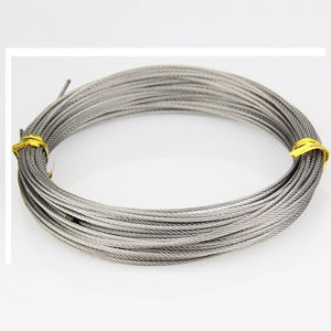 Steel Wire Rope 6x19 FC pictures & photos