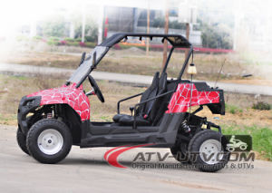 China Best Selling 150cc UTV Utility Vehicle Ut2001 pictures & photos