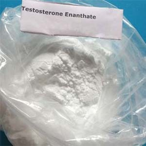 How to Find Testosterone Enanthate for Shandong