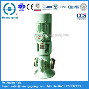 Huanggong Marine Vertical Main Engine Lube Oil Pump pictures & photos