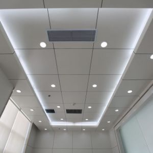 ISO Non-Standard Metal Ceiling with Factory Price for Interior Decorative pictures & photos