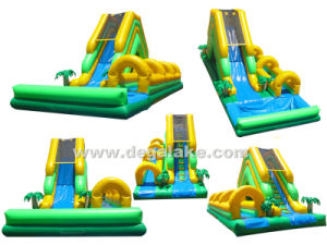 "Inflatable Water Slide with Slip ""N"" Slide for Amusement Park pictures & photos"