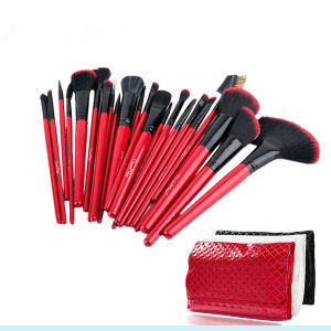 Professional 24 PCS Eyeshadow Lip Makeup Brushes Set for Christmas pictures & photos