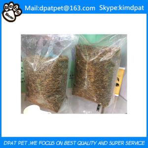 Wholesale Cheap Commercial Pet Bird Food pictures & photos