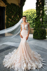 Mermaid Illusion Neck Ivory/Champagne Wedding Dress pictures & photos