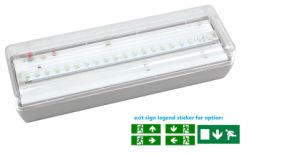 Ce Certified 3hours Maintained Bulkhead LED Emergency Light pictures & photos