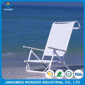 Adult Beach Chair Ral Color Pure Polyester Powder Coating Paint pictures & photos