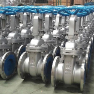 ANSI Stainless steel Flange Gate Valve in 150lb (Z41) pictures & photos