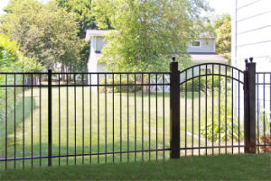 Top Quality Free Maintenance Powder Coated Ornamental Fence with Gate pictures & photos