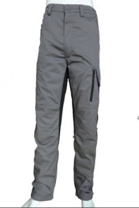 2017 Hot Newest Lined Twill Gray Pants, Short, Workwear Pants, Trousers pictures & photos