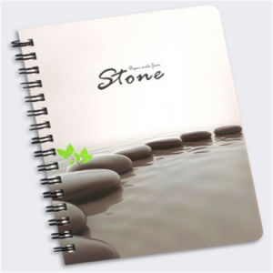 Eco-Friendly Waterproof Stone Paper (RPD100) pictures & photos